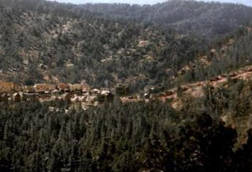 """W serii """"Deadwood"""": opinie, działka, recenzje, aktorzy i role"""