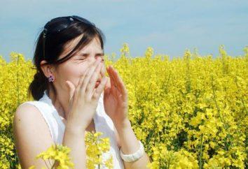 Le remède pour les allergies à l'ambroisie – t-il exister?