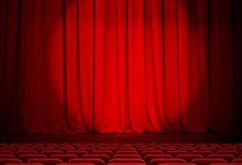 ¿Qué hacer en una institución teatral sobre un actor o director?