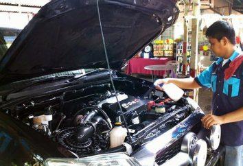 Los medios para el lavado de motor de coche: consejos sobre cómo elegir y comentarios