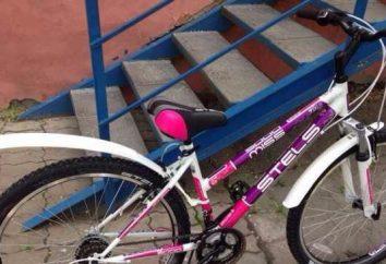 Weibliches Fahrrad Stels Fräulein 5000: Beschreibung,