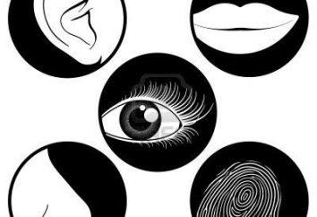 """Eine detaillierte Analyse des Gedichts Gumilev, """"The Sixth Sense"""""""