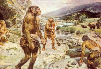 Neandertalczyk – to … Starożytni ludzie – Neandertalczycy