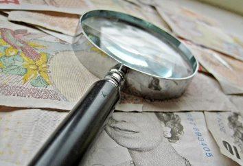 contabilità forense: base giuridica ed economica
