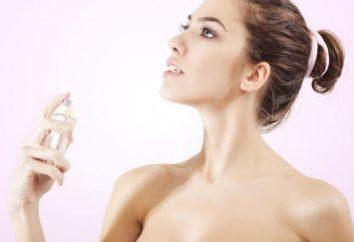 perfume sensual Calvin Klein Beauty