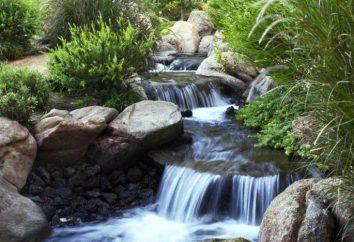 ¿Qué es una cuenca hidrográfica? Tipos de las cuencas hidrográficas. El concepto de cuenca hidrográfica
