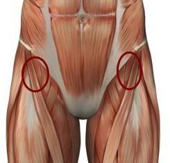 Ból w stawie biodrowym podczas chodzenia: Przyczyny i leczenie. Dlaczego boli staw biodrowy podczas chodzenia?