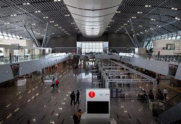 """moderna stazione """"Adler"""": come creare un singolo dei più bei edifici della stazione ferroviaria in Russia?"""