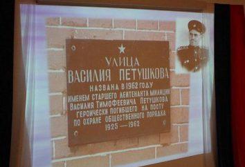 Tenente da milícia Petushkov Vasily Timofeevich: biografia e façanha
