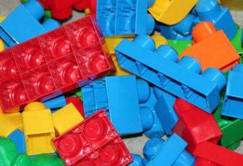 Dzieci projektanci MEGA Bloks: opis, opis, model, producenta i opinie