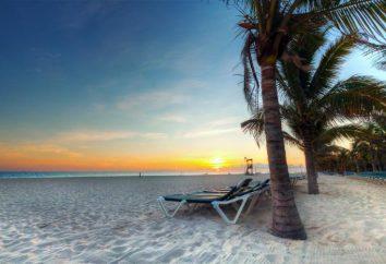 Strandurlaub im August. Spanien, Italien, Griechenland: ein Strandurlaub im August