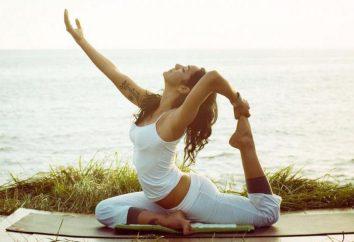 Ashtanga Vinyasa Yoga: die Beschreibung, Merkmale des Stils