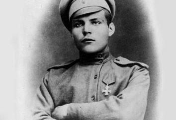 Marshal Malinovskiy Rodion Yakovlevich: biografia, prêmios e curiosidades