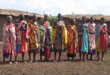 ornamento africano: características estilísticas, símbolos