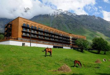 "Hotel ""FFRS Kazbegi"" Géorgie: photo, avis"