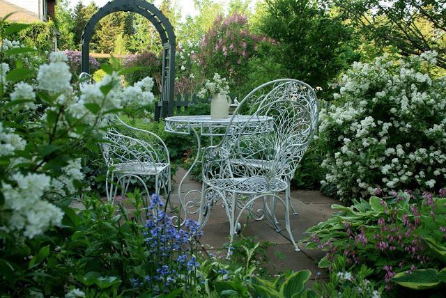 Cespugli fioriti per giardino perfect come creare aiuole for Cespugli fioriti da giardino