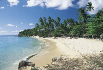 L'île de Trinidad, Brésil: description, attractions, nature