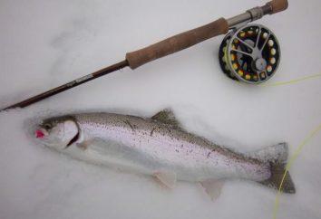 Co jest najlepsze dla rybołóstwa zimnego pręt trolling?