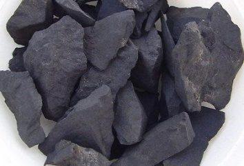 shungite di pietra per la purificazione dell'acqua: recensioni, proprietà, applicazione e l'efficacia