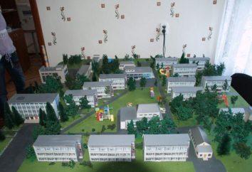 """camp """"de Chkalovets"""". Les camps de vacances pour enfants. camp pour enfants « Chkalovets », Novossibirsk"""