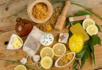 cucina organica: recensioni di cosmetici per capelli