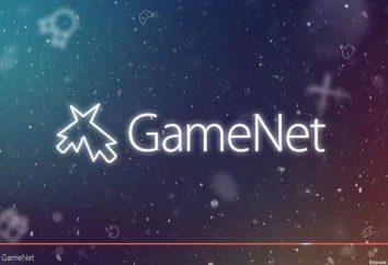 GameNet Thorn – jak usunąć? Usuwanie programów z linii poleceń