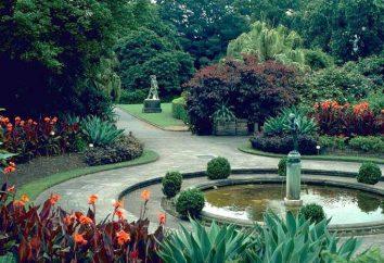 Royal Botanic Gardens (Sydney) – lenitivo oasi naturale
