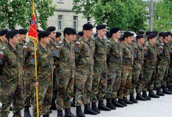 Quelle armée a l'Allemagne? Armée d'Allemagne: force, équipement, armes