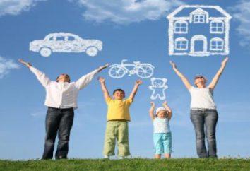 """""""Haidee"""" (companhia de seguros): informações úteis para os potenciais clientes"""