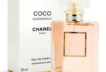 fragrâncias laço para as mulheres: a classificação. perfumes popular para as mulheres