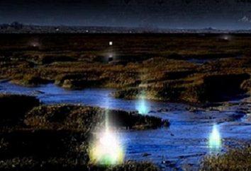Tajemniczy wędrowny pożar – co to jest? Jak powstają światła wędrowne?