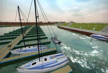 Symulator windy, toaleta publiczna, roller coaster i inne egzotyczne gry gatunkowe