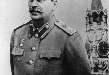 Industrializacja w ZSRR: pierwszy plan pięcioletni