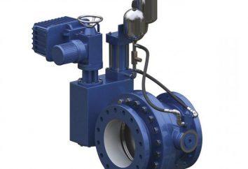 La válvula de retención de la bomba de agua: Características de la revisión, variedades, instalaciones y técnicas