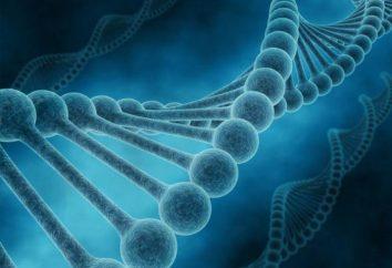 La fibrosis quística es un niño: signos, síntomas, tratamiento