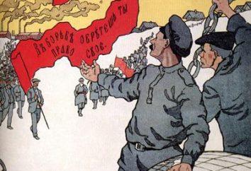 Parti socialiste-révolutionnaire en Russie. La forme de gouvernement du parti SR