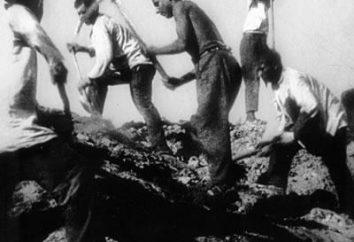 Dzień Pamięci dla ofiar głodu historii i cech