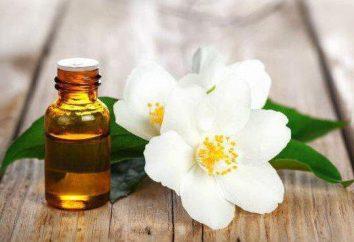 Aceite esencial del jazmín: propiedades, aplicaciones, opiniones