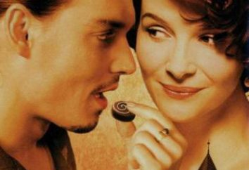 """Il film """"Chocolate"""": recensioni e descrizione"""