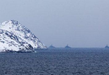 Northern Fleet – Rosja Polar Tarcza