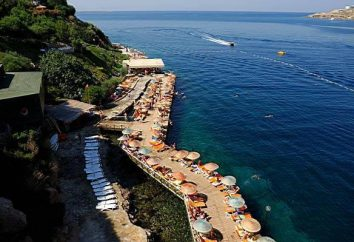 Green Beach Resort Hotel 5 * (Turchia / Bodrum): foto e recensioni