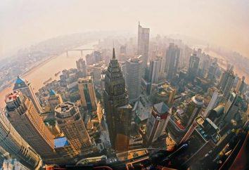 Qual è l'urbanizzazione allo stadio attuale di sviluppo della società?