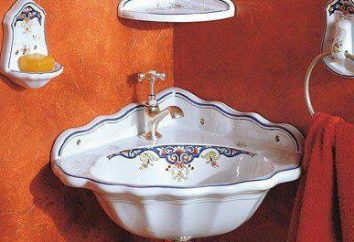 Mini-évier pour la salle de bain: taille, photo, installation de