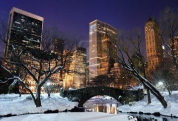 O que visitar em amantes de viagens de Nova Iorque