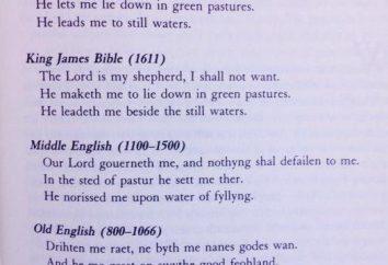 Anglosaski historia, gramatyka i krótki słownik.