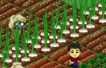 """""""Zombie Farm"""": Costruito nel gioco"""