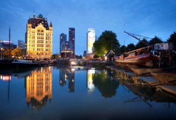 Conto no maior porto da Europa. atrações Roterdão