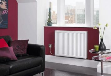 Refrigeranti per il sistema di riscaldamento. Antigelo per il riscaldamento: prezzo