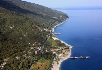 Come arrivare da Adler a Abkhazia da soli?