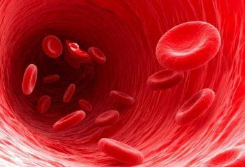 Objawy i przyczyny niskiej hemoglobiny u kobiet